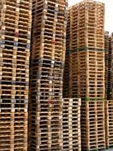 "Stocks of ""ready to go"" UK standard 1200 x 1000 pallets."